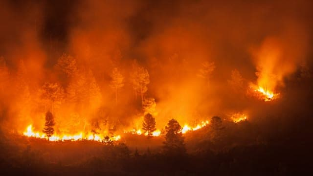 ? California Wildfires to Fiery Elections
