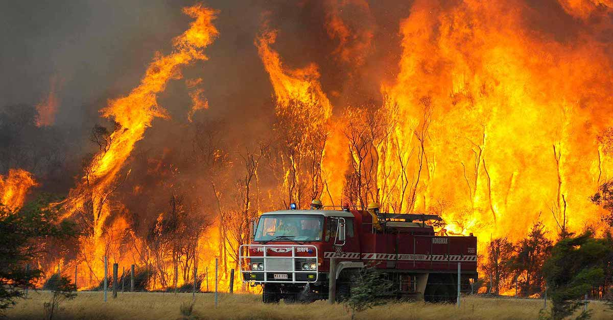 Australian MP Craig Kelly Is Right – Bushfires Not Caused By Climate Change