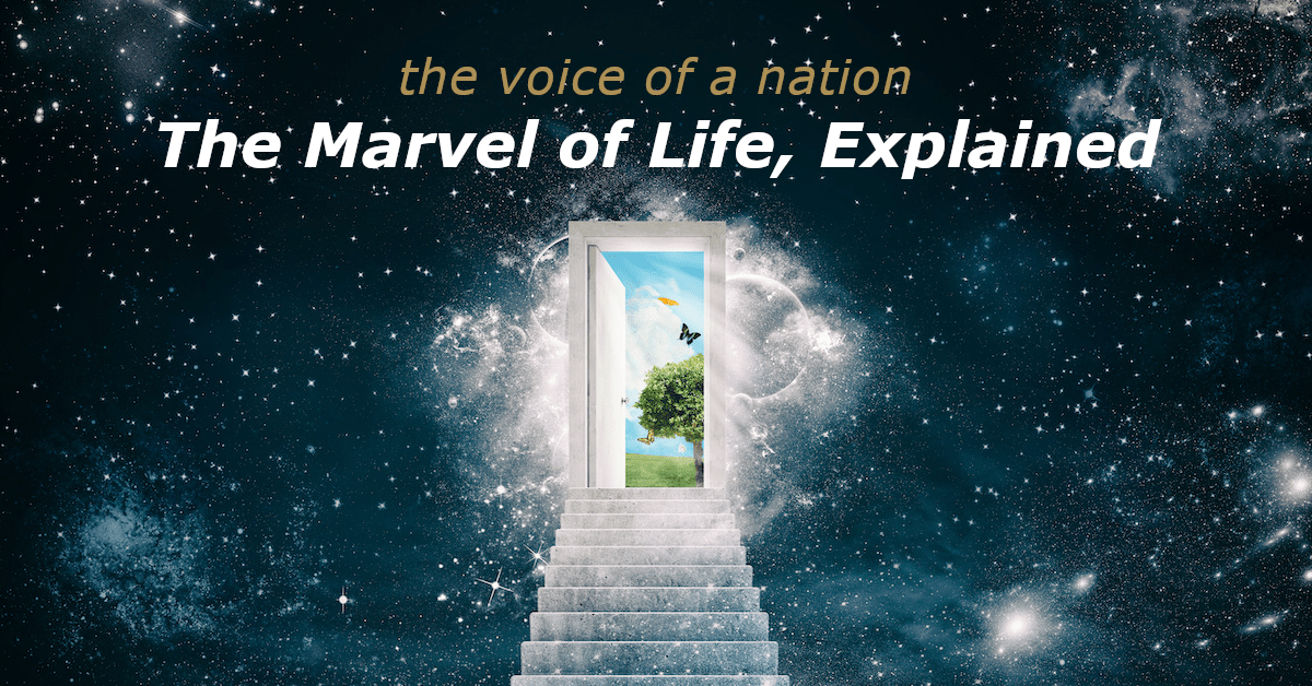 The Marvel of Life Explained