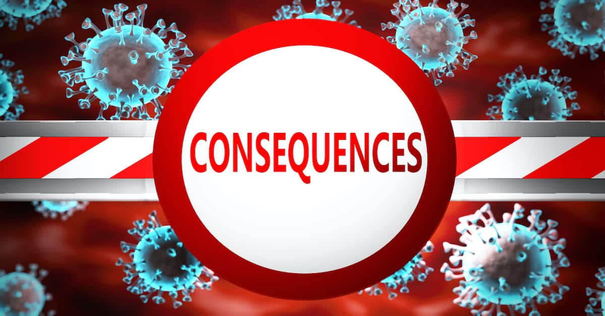 Consequences: The Virus, The Riots, and The 2020 Elections