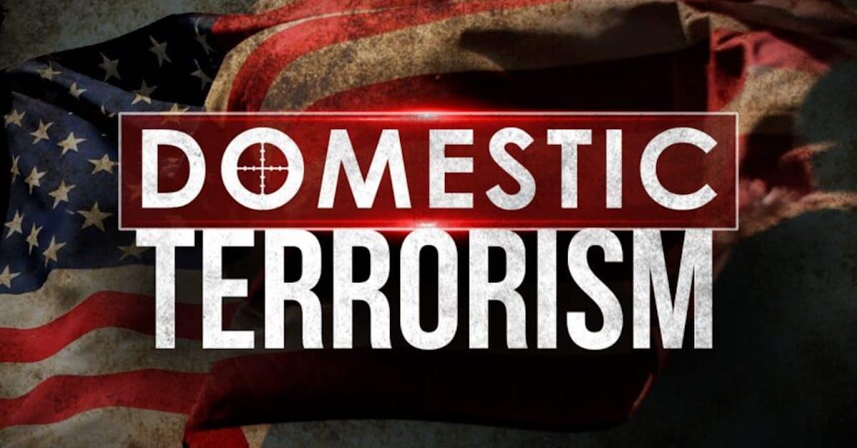 America's Growing Domestic Terrorism Problem, Who Is It, Really?